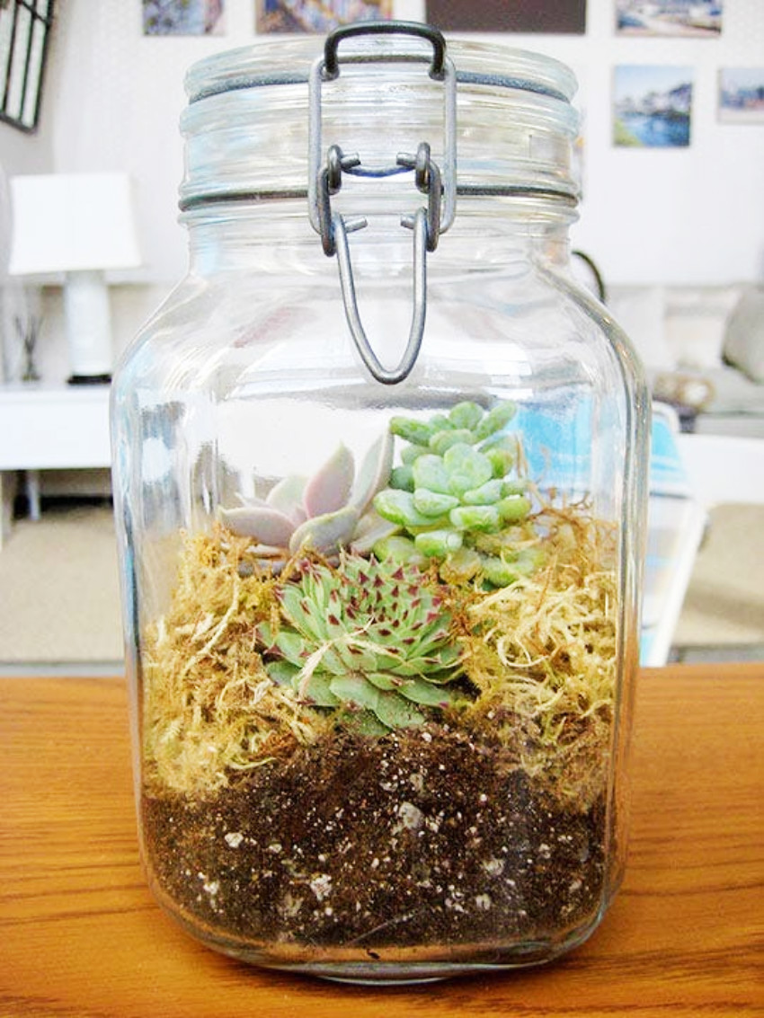 A terrarium in a jar is unique and creative!