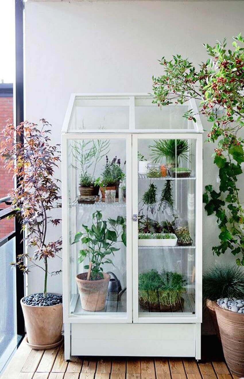Plant DIY: Choosing the right spot for your greenhouse is crucial.