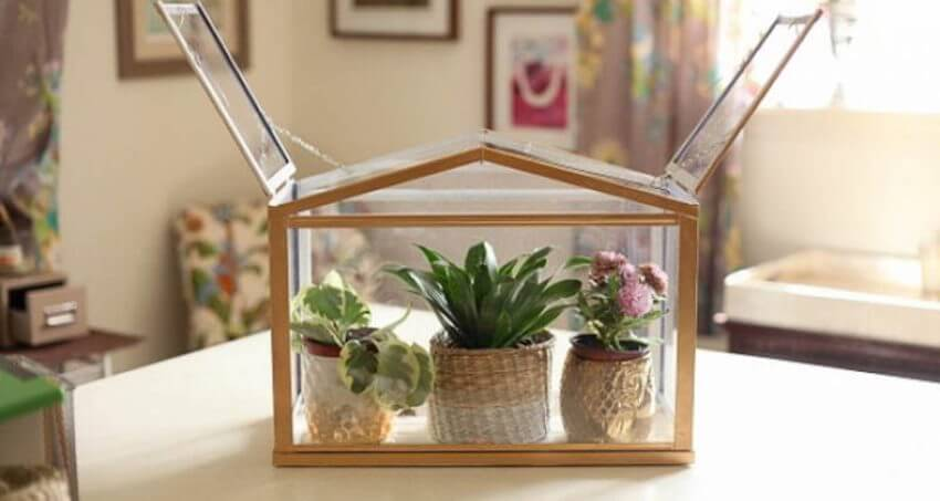 Interior DIY: On mobile greenhouses, having a big opening on the top is great to easier water the plants.