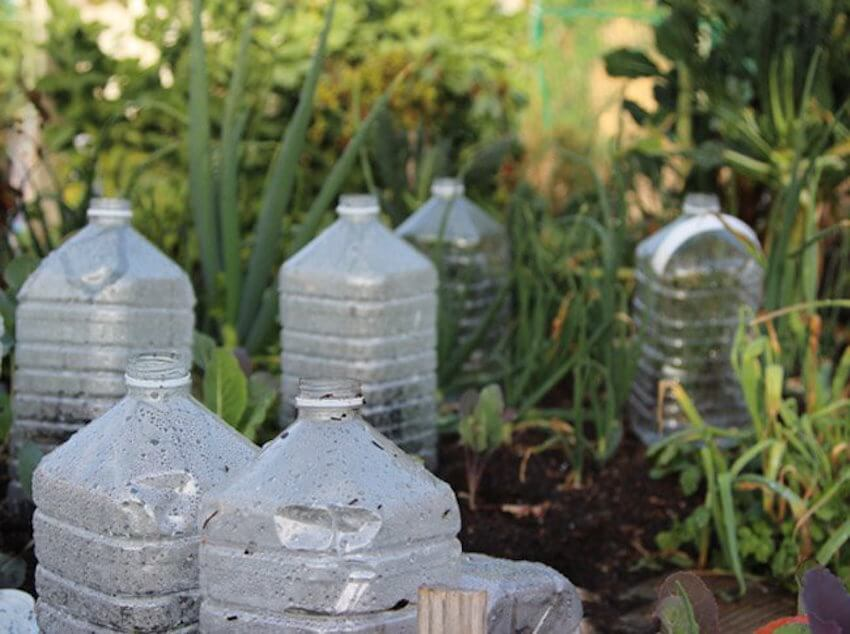Landscape DIY: Cheap and efficient solution to create tiny greenhouses on your backyard: plastic bottles.