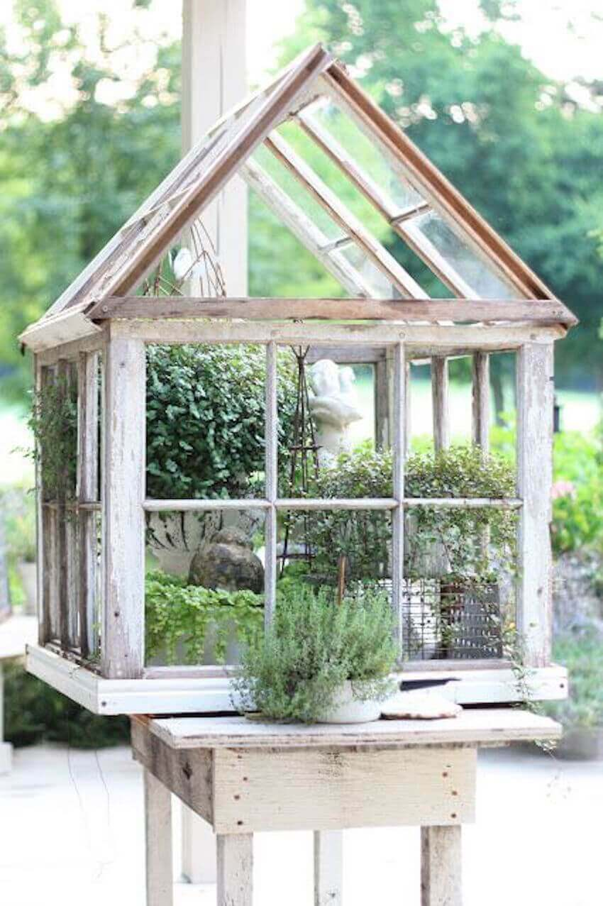 Lawn care DIY: Making a mini greenhouse rather than a normal one is best for those who don't have much space or don't want to make a big commitment.
