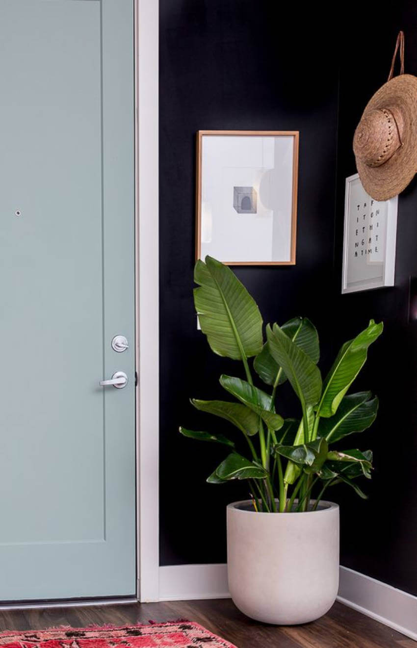 Give your entryway a modern and minimalistic look with some black walls!