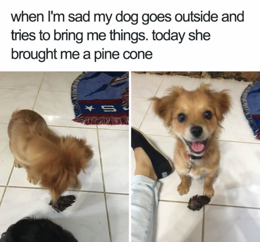 Look at that smile