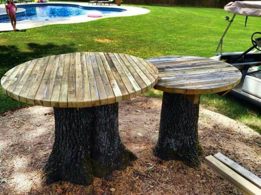 Have a tree stump in your backyard? Good news for you!