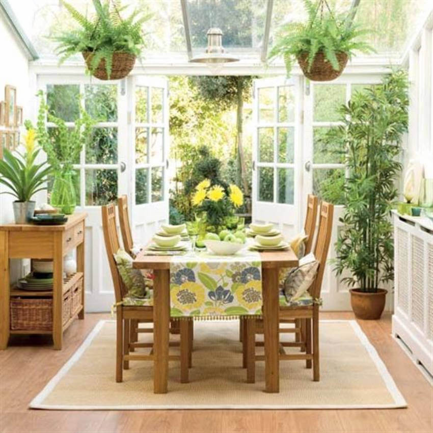 Make a healthy space for the whole family to live in by adding more houseplants!