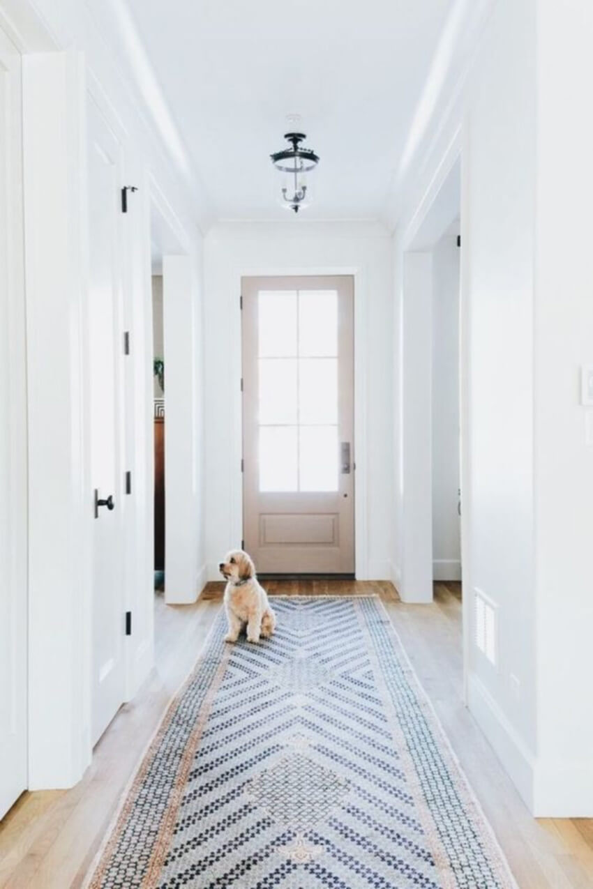 Keeping rugs clean is even more important with pets around.