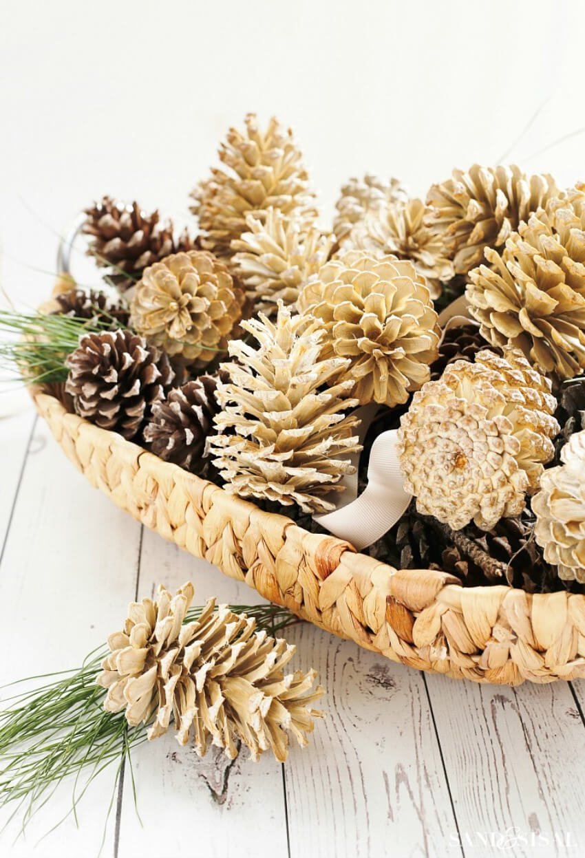 Bleached pinecones look beautiful and unique!