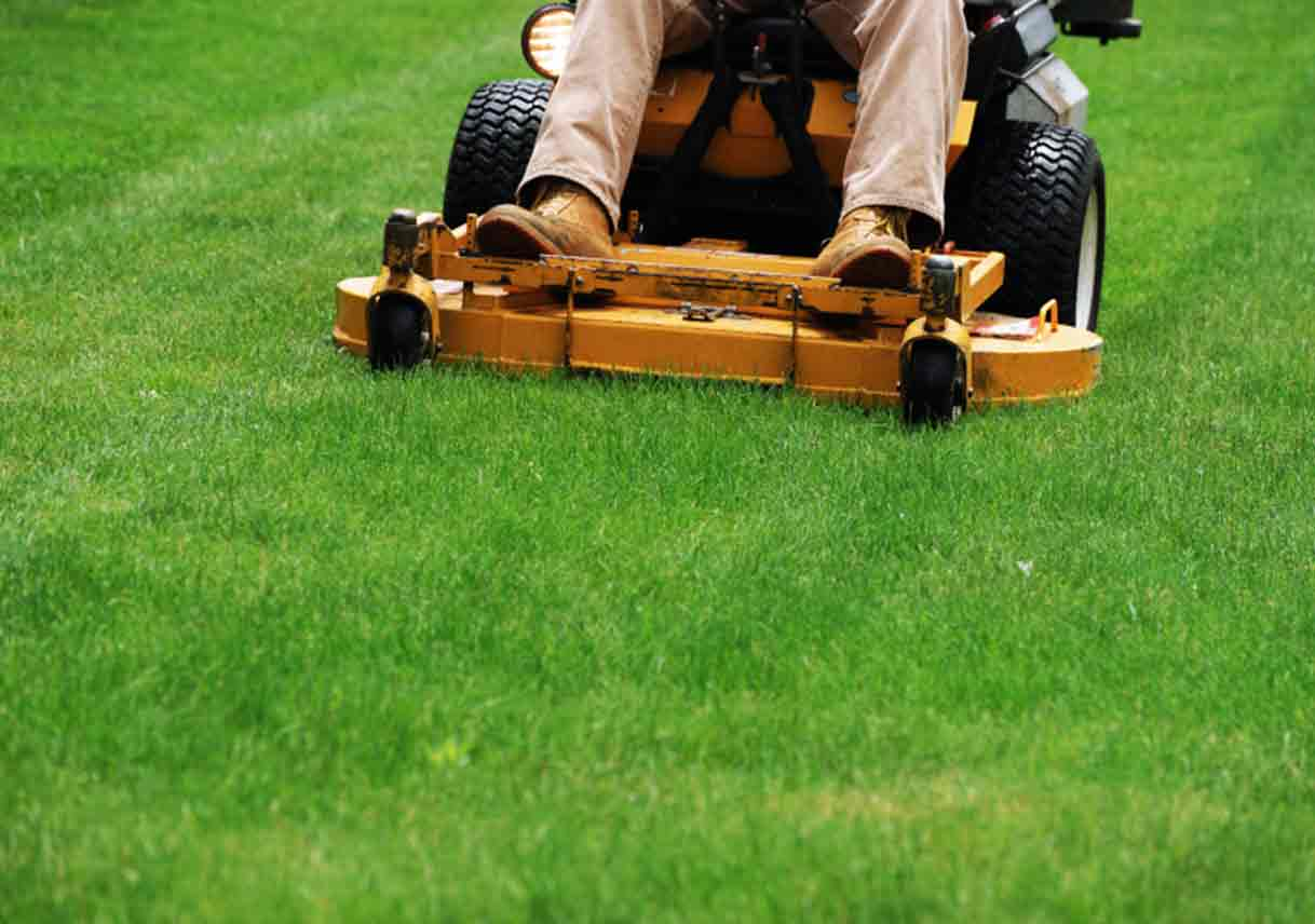 Mow your lawn regularly to keep it healthy
