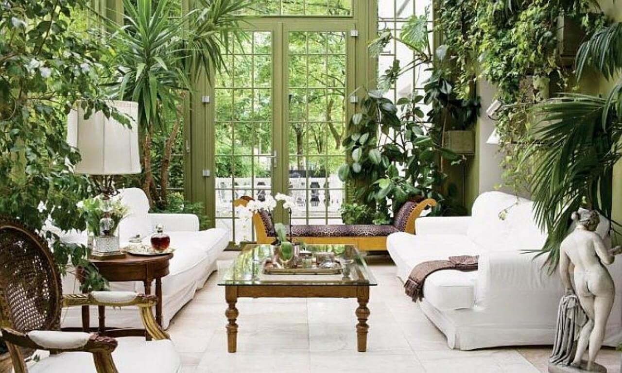 Found your own interior garden.