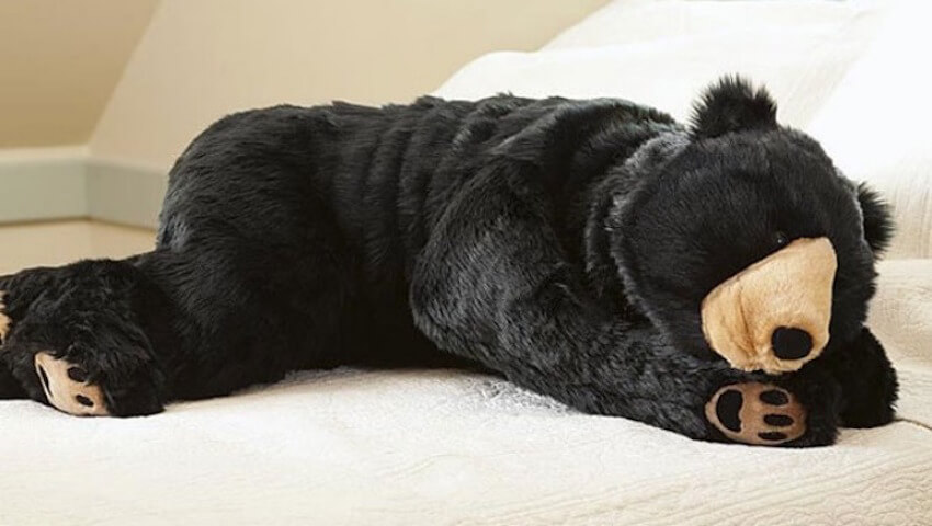This sleeping bag that looks like a bear will make sure no one disturbs you during your nap.