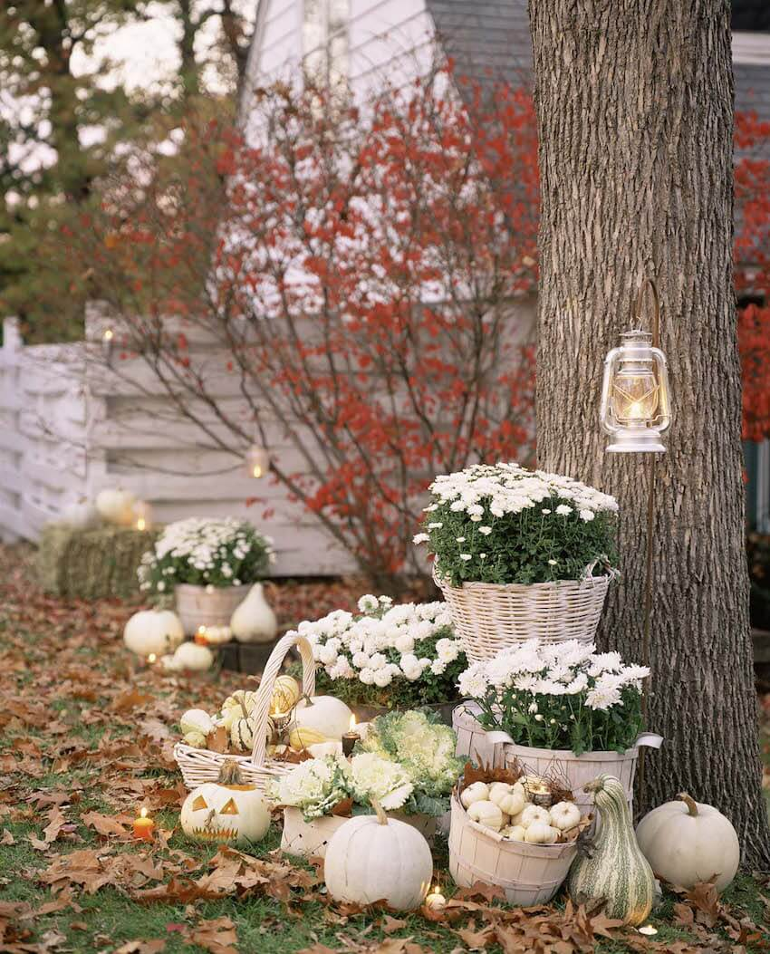 This Halloween: White chrysanthemums, apple baskets and white pumpkins are enough to create a beautiful DIY outdoor display.