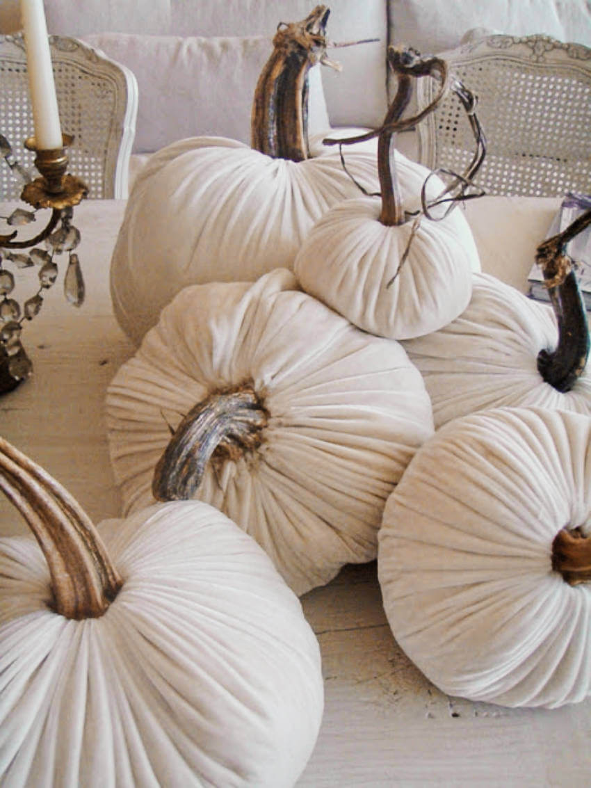 Adorable velvet pumpkin to keep your decor classy!