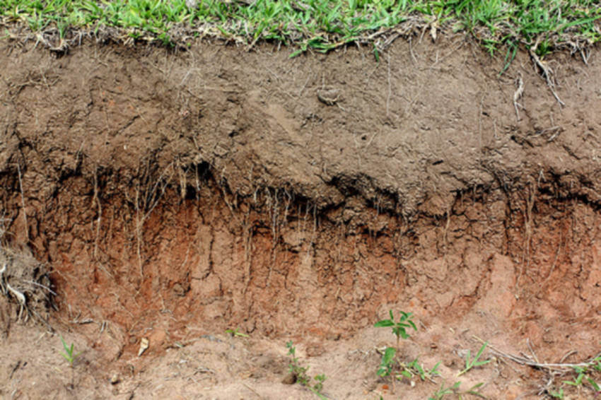 A hardpan is a thick layer of impervious subsoil.